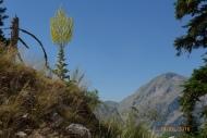 Fteri-Liakoura ridge near Mersin
